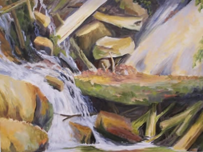 Rocks Logs and Rivulet (Nature`s Patterns) (16 in x 20 in)